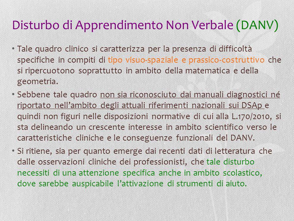 Disturbo di Apprendimento Non Verbale (DANV)
