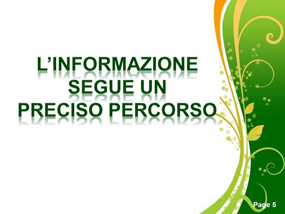 L'informazione segue un preciso percorso