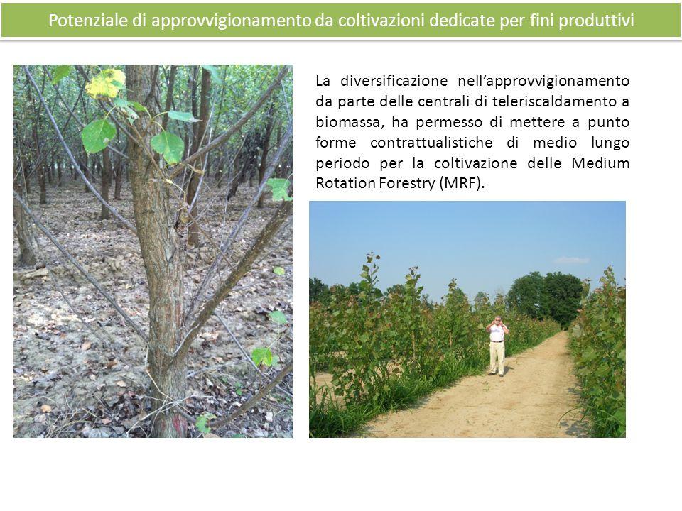 Potenziale di approvvigionamento da coltivazioni dedicate per fini produttivi