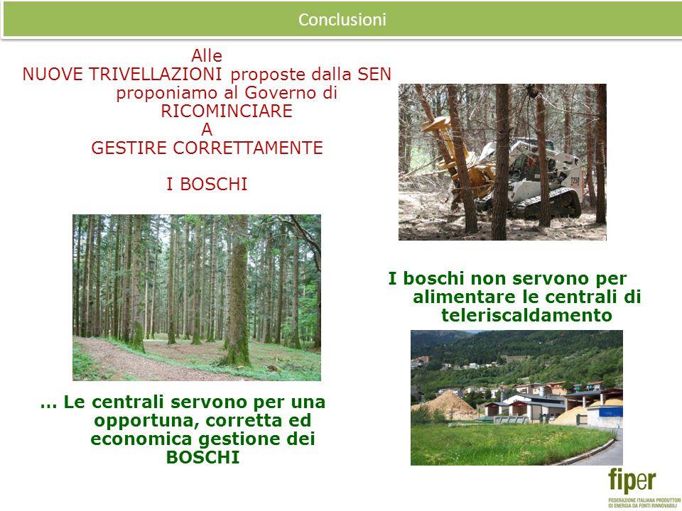 I boschi non servono per alimentare le centrali di teleriscaldamento