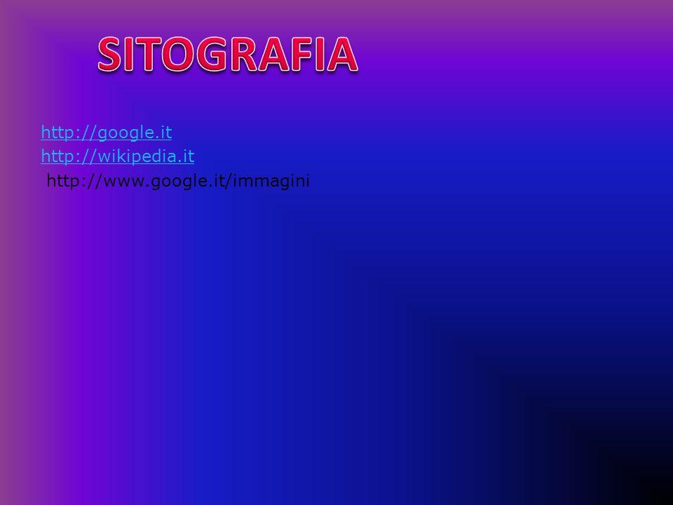 SITOGRAFIA http://google.it http://wikipedia.it http://www.google.it/immagini