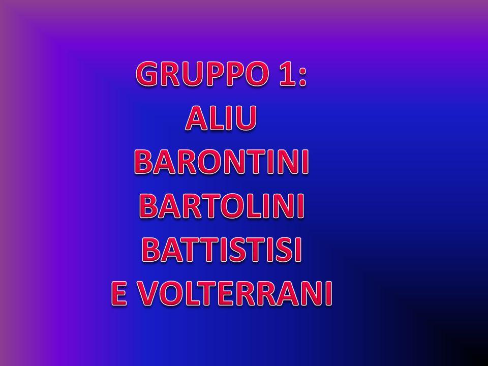 GRUPPO 1: ALIU BARONTINI BARTOLINI BATTISTISI E VOLTERRANI