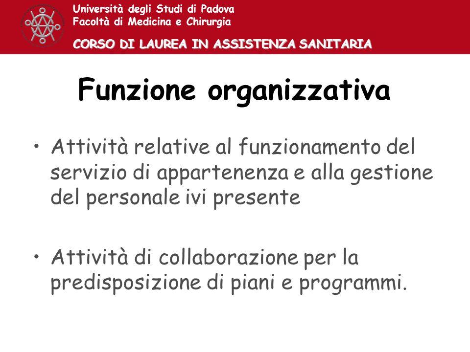 Funzione organizzativa