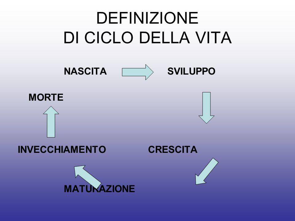 DEFINIZIONE DI CICLO DELLA VITA