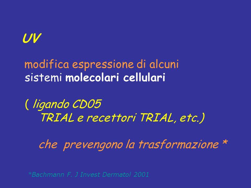 UV sistemi molecolari cellulari ( ligando CD05