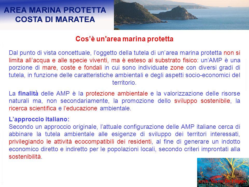 Cos'è un area marina protetta