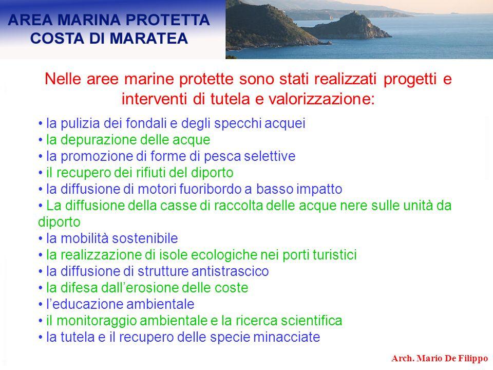 Nelle aree marine protette sono stati realizzati progetti e interventi di tutela e valorizzazione: