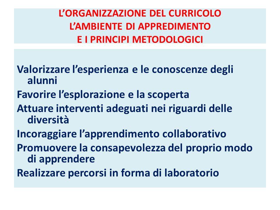 L'ORGANIZZAZIONE DEL CURRICOLO L'AMBIENTE DI APPREDIMENTO E I PRINCIPI METODOLOGICI