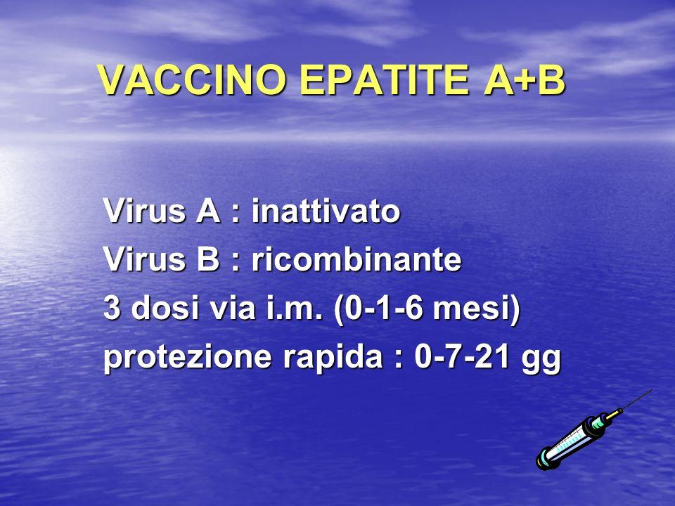 VACCINO EPATITE A+B Virus A : inattivato Virus B : ricombinante