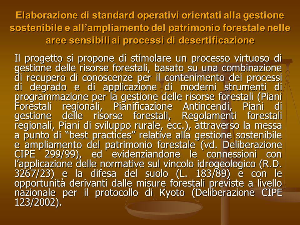 Elaborazione di standard operativi orientati alla gestione sostenibile e all'ampliamento del patrimonio forestale nelle aree sensibili ai processi di desertificazione