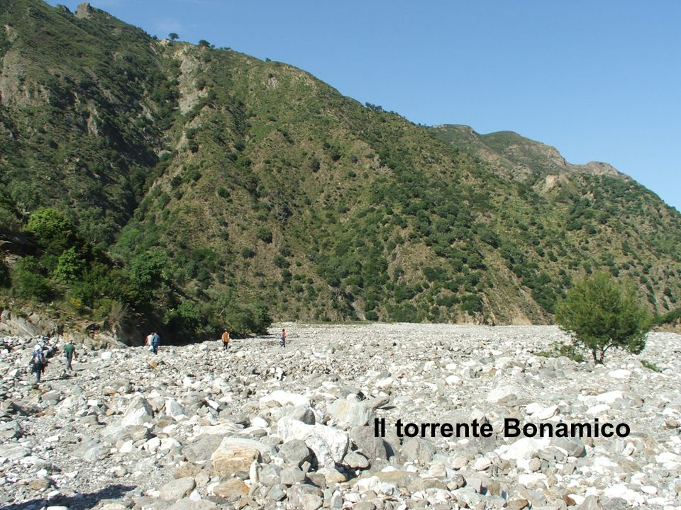 Il torrente Bonamico