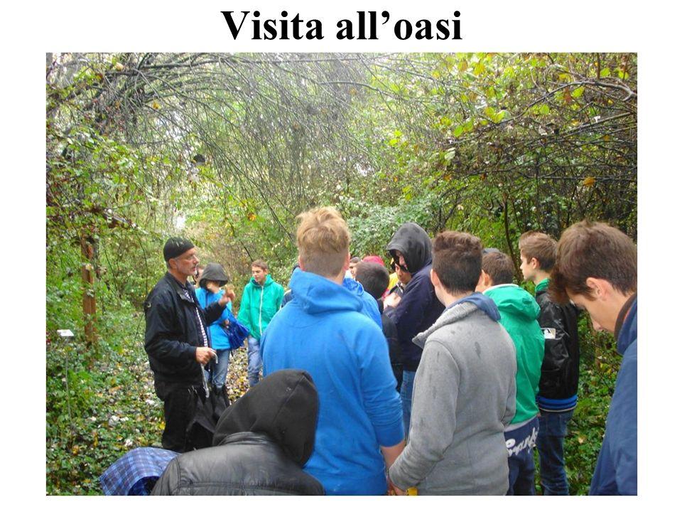 Visita all'oasi