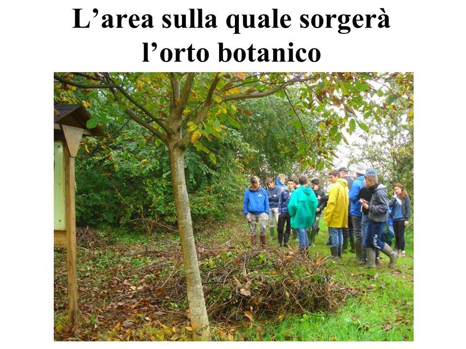 L'area sulla quale sorgerà l'orto botanico