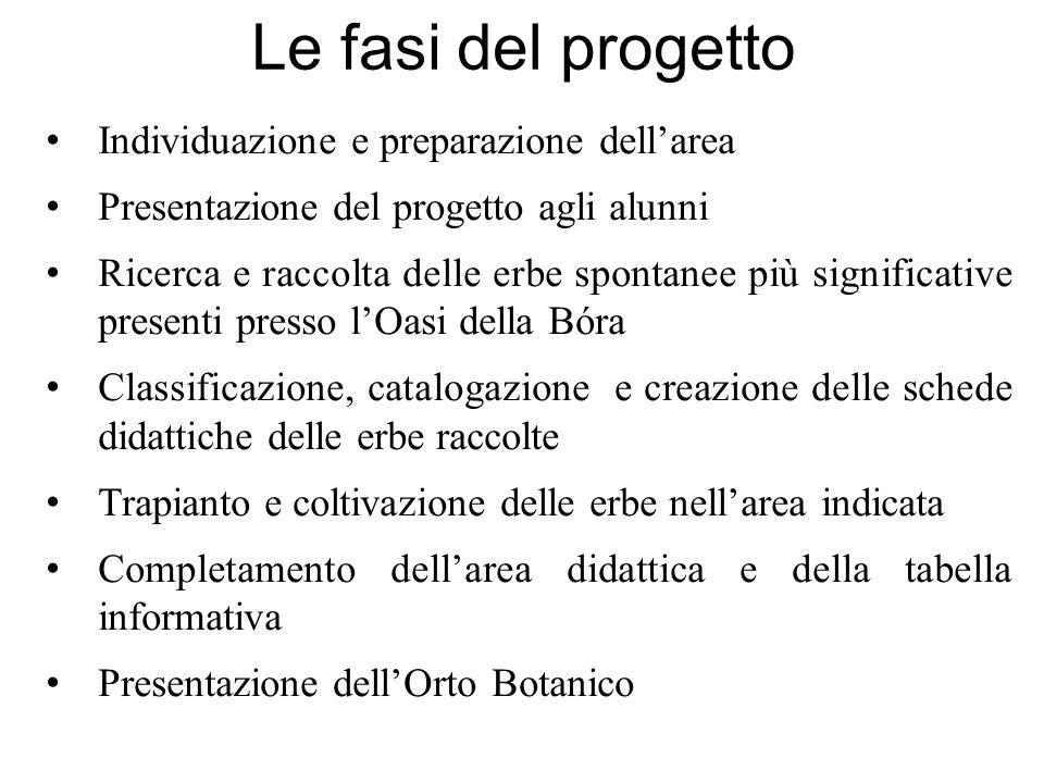 Le fasi del progetto Individuazione e preparazione dell'area