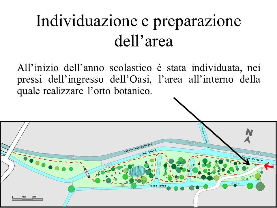 Individuazione e preparazione dell'area