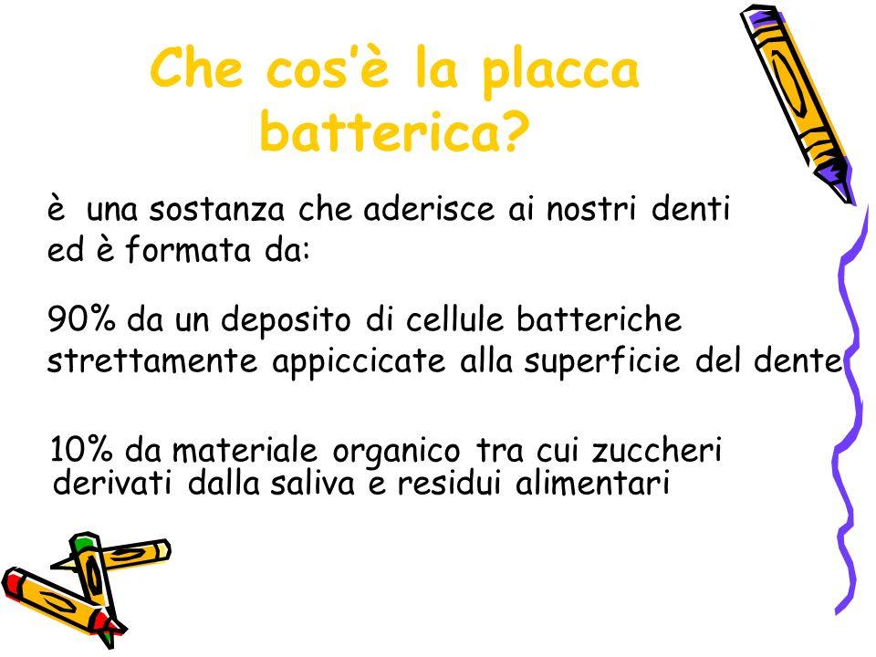 Che cos'è la placca batterica