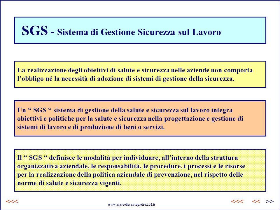 SGS - Sistema di Gestione Sicurezza sul Lavoro