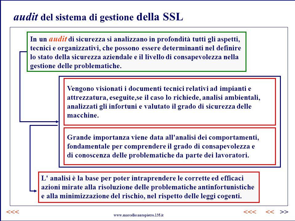 audit del sistema di gestione della SSL