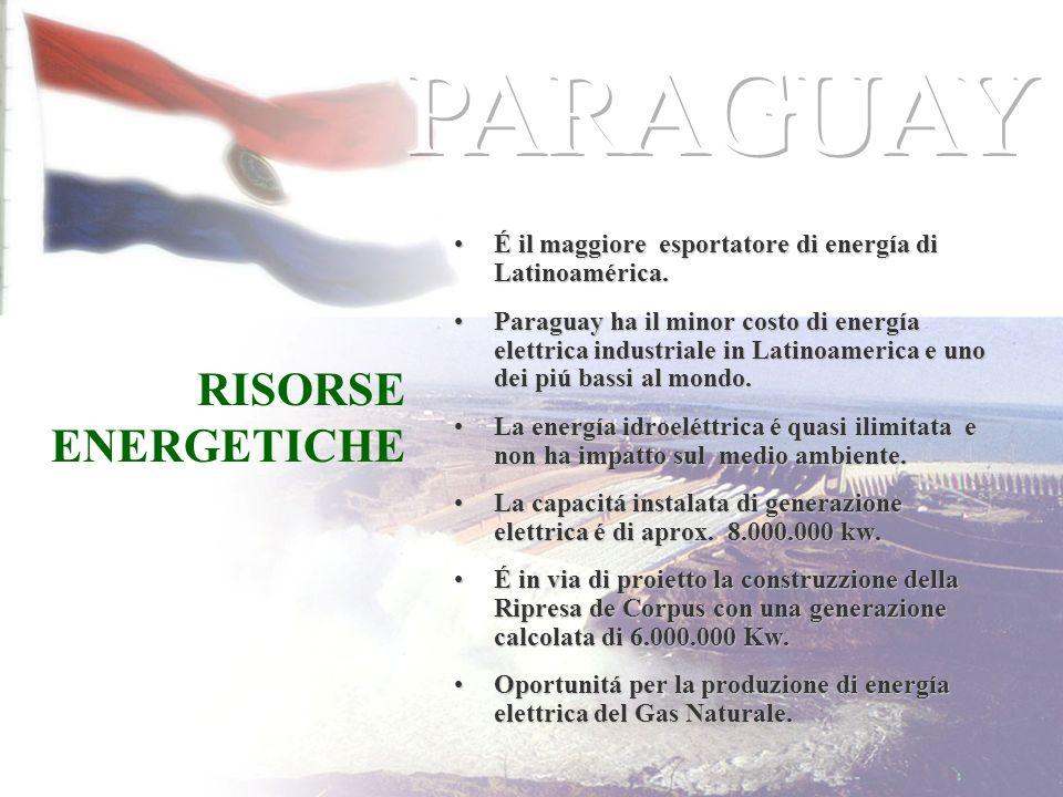 PARAGUAY RISORSE ENERGETICHE