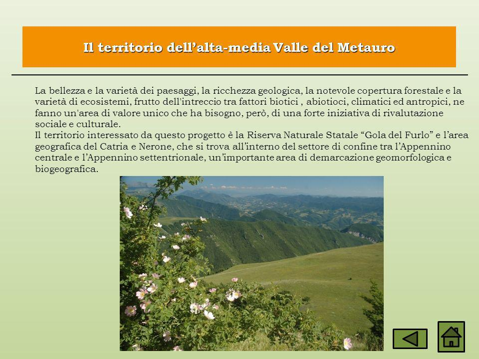 Il territorio dell'alta-media Valle del Metauro