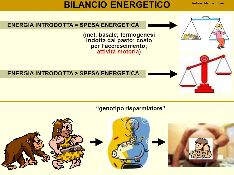 BILANCIO ENERGETICO ENERGIA INTRODOTTA = SPESA ENERGETICA