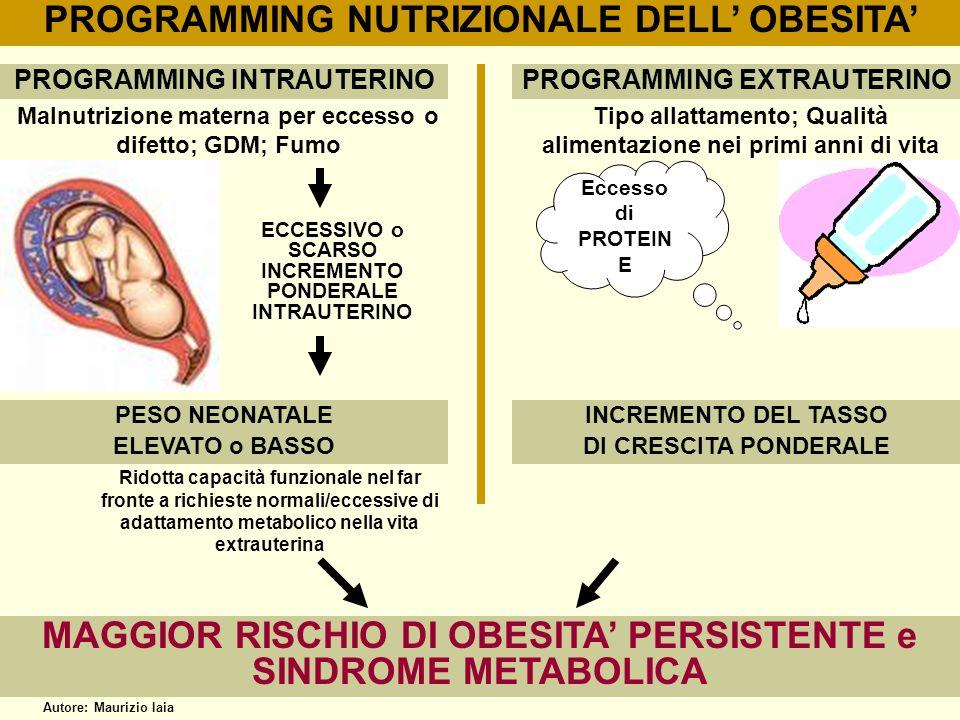 PROGRAMMING NUTRIZIONALE DELL' OBESITA'