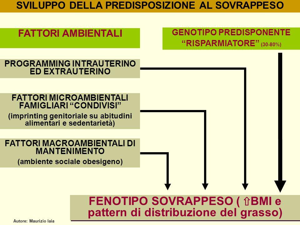FENOTIPO SOVRAPPESO ( ⇧BMI e pattern di distribuzione del grasso)