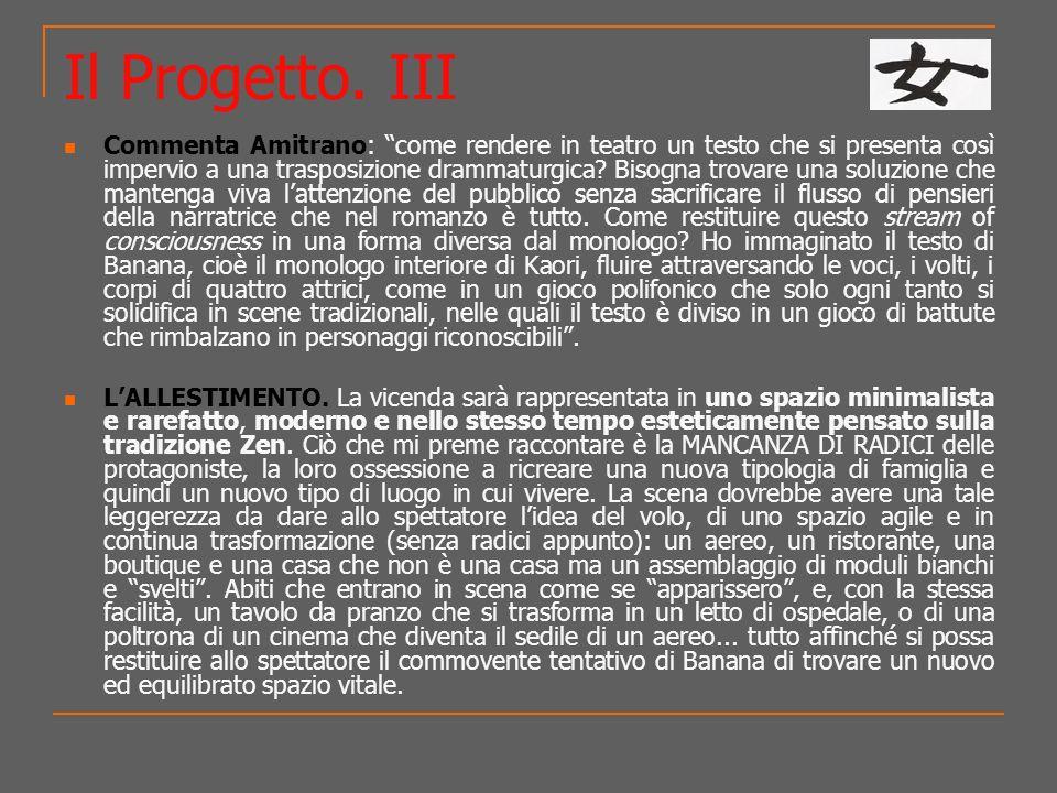 Il Progetto. III