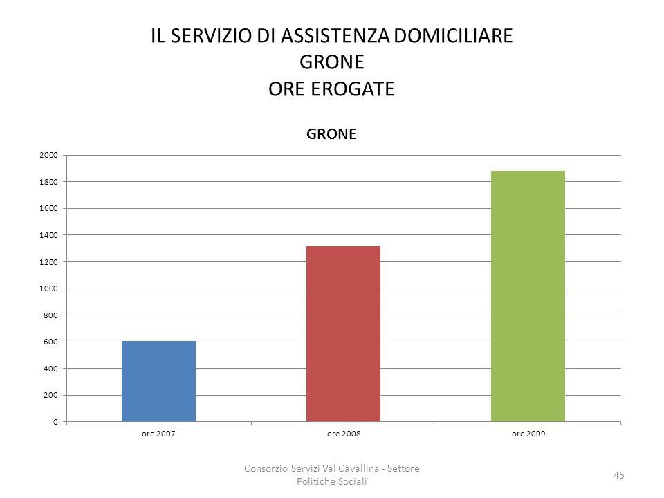 IL SERVIZIO DI ASSISTENZA DOMICILIARE GRONE ORE EROGATE