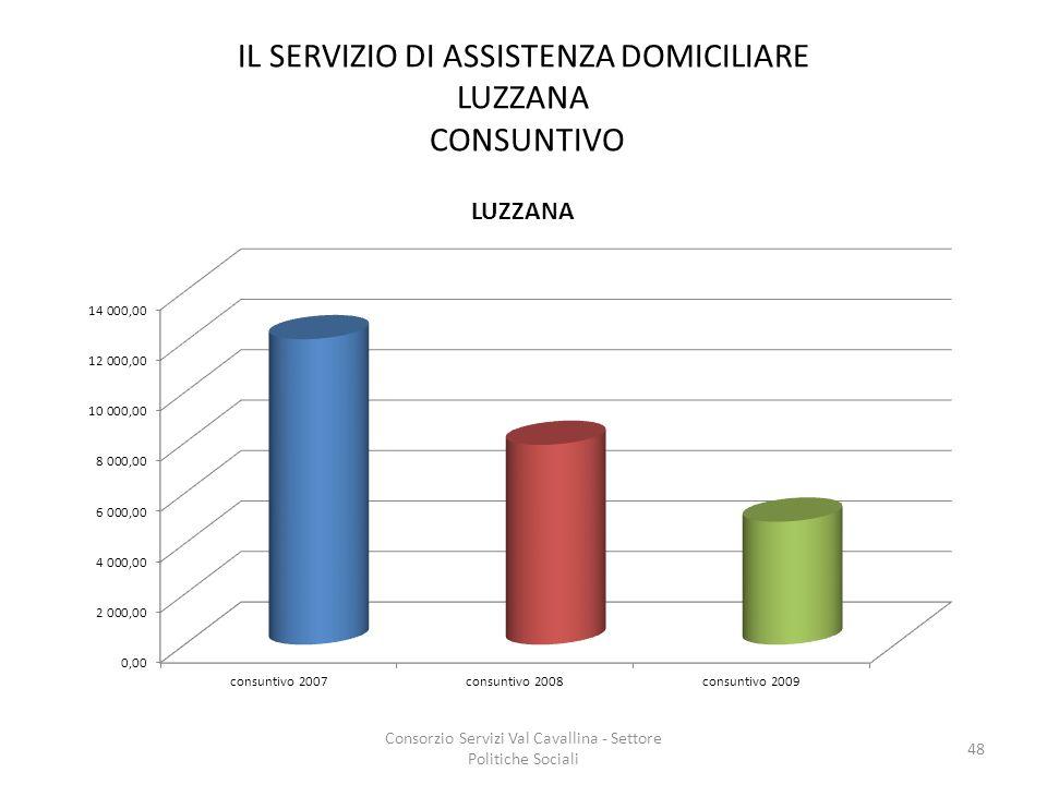 IL SERVIZIO DI ASSISTENZA DOMICILIARE LUZZANA CONSUNTIVO