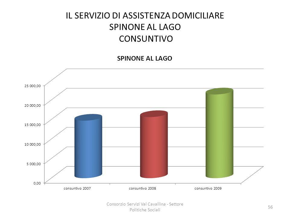 IL SERVIZIO DI ASSISTENZA DOMICILIARE SPINONE AL LAGO CONSUNTIVO