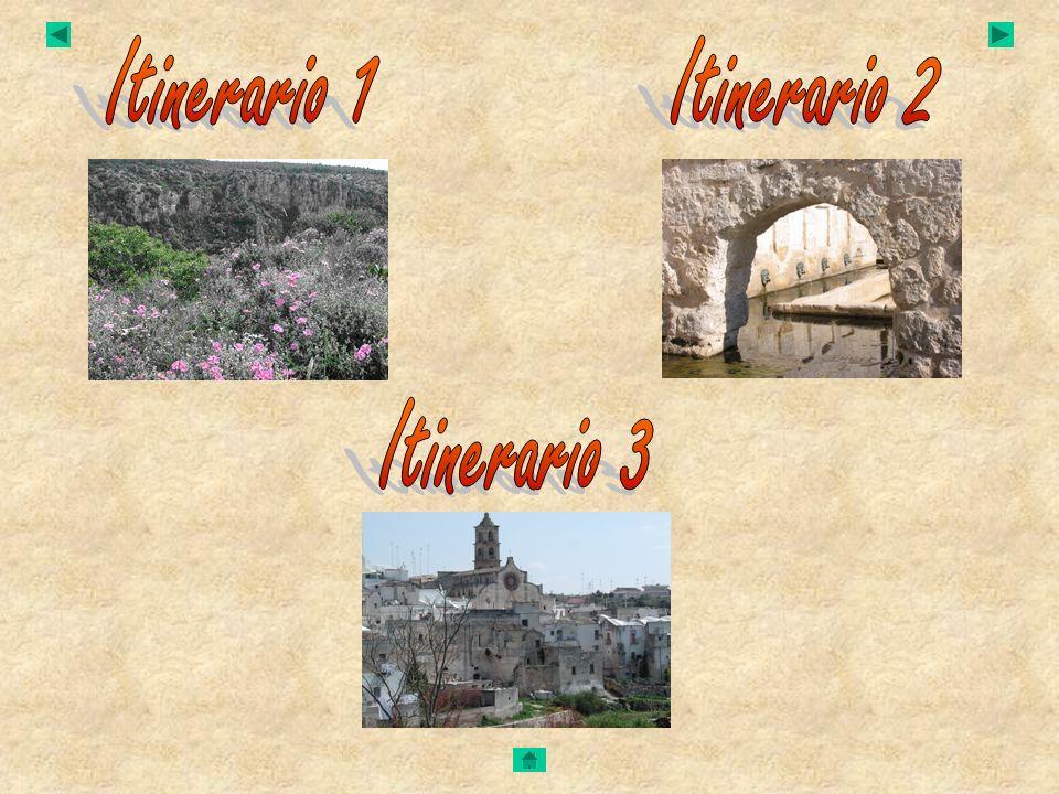 Itinerario 1 Itinerario 2 Itinerario 3
