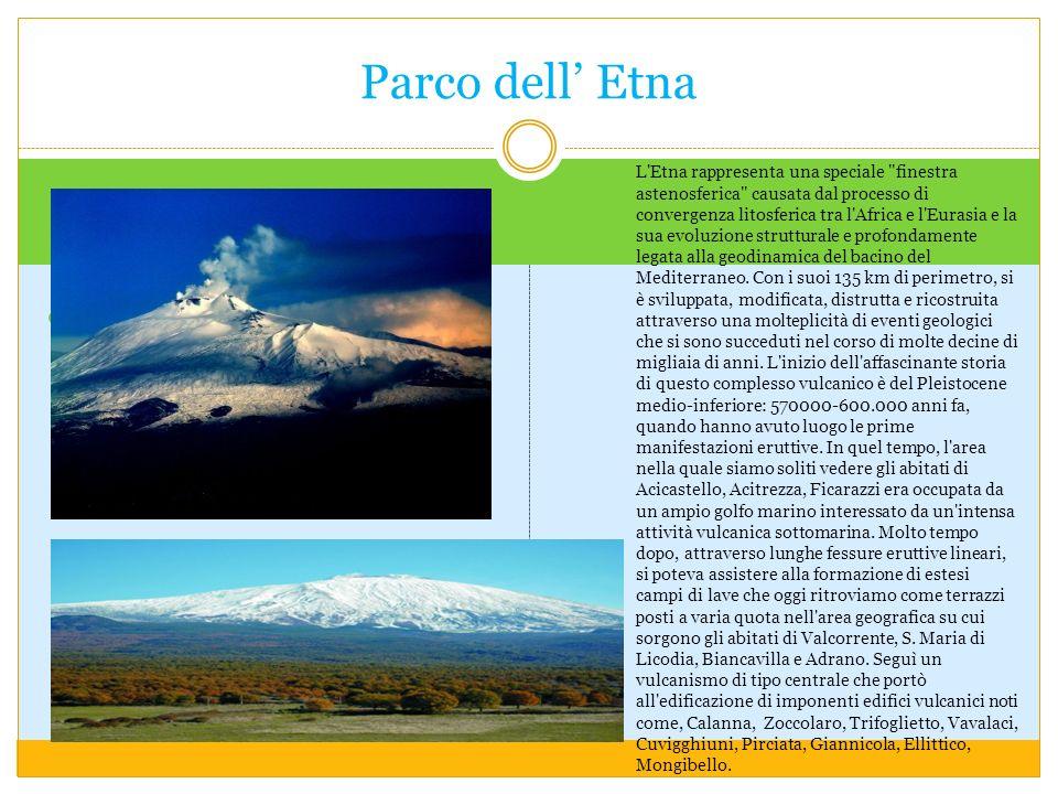 Parco dell' Etna