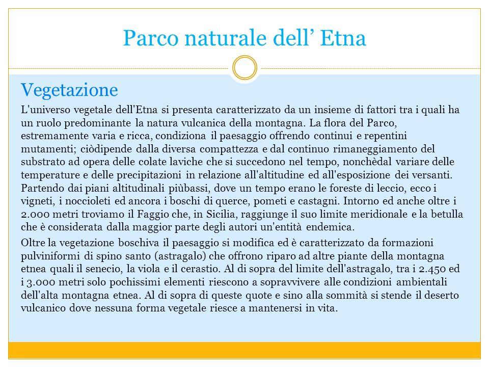 Parco naturale dell' Etna