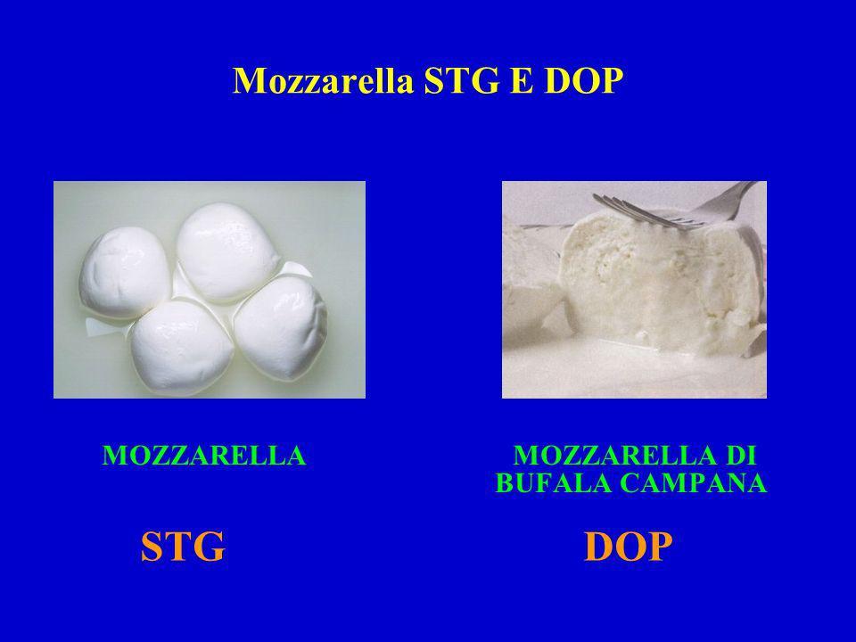 Mozzarella STG E DOP MOZZARELLA MOZZARELLA DI BUFALA CAMPANA STG DOP