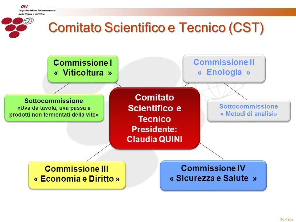 Comitato Scientifico e Tecnico (CST)