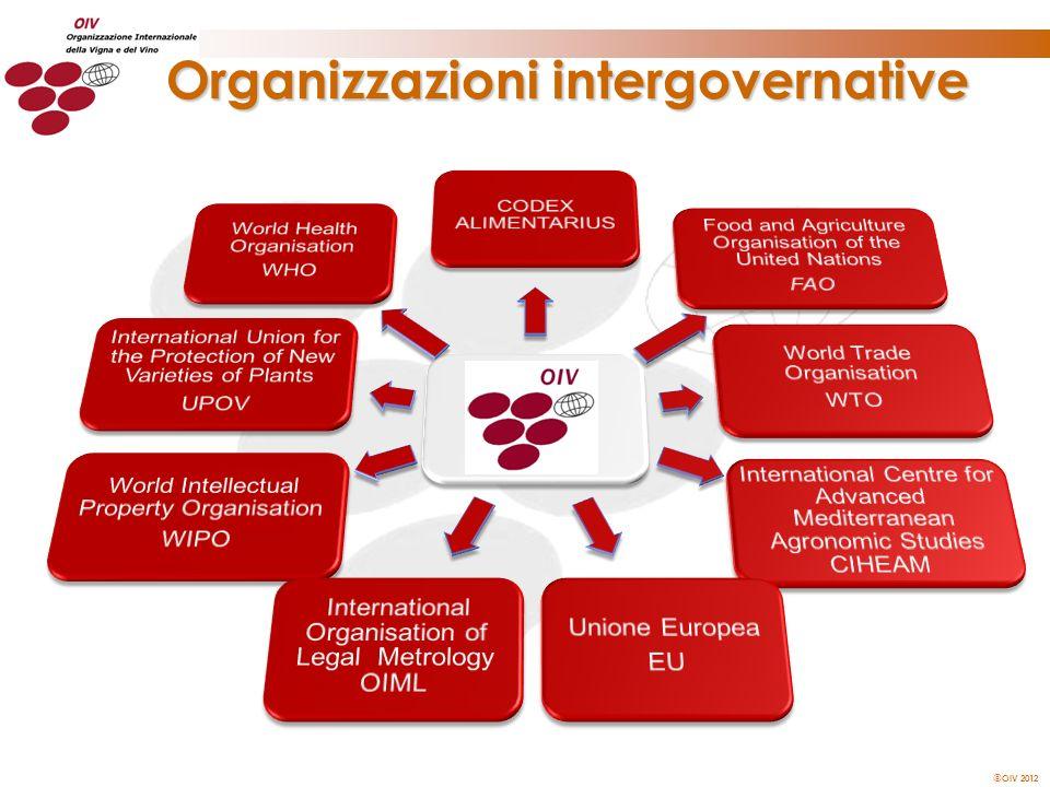 Organizzazioni intergovernative