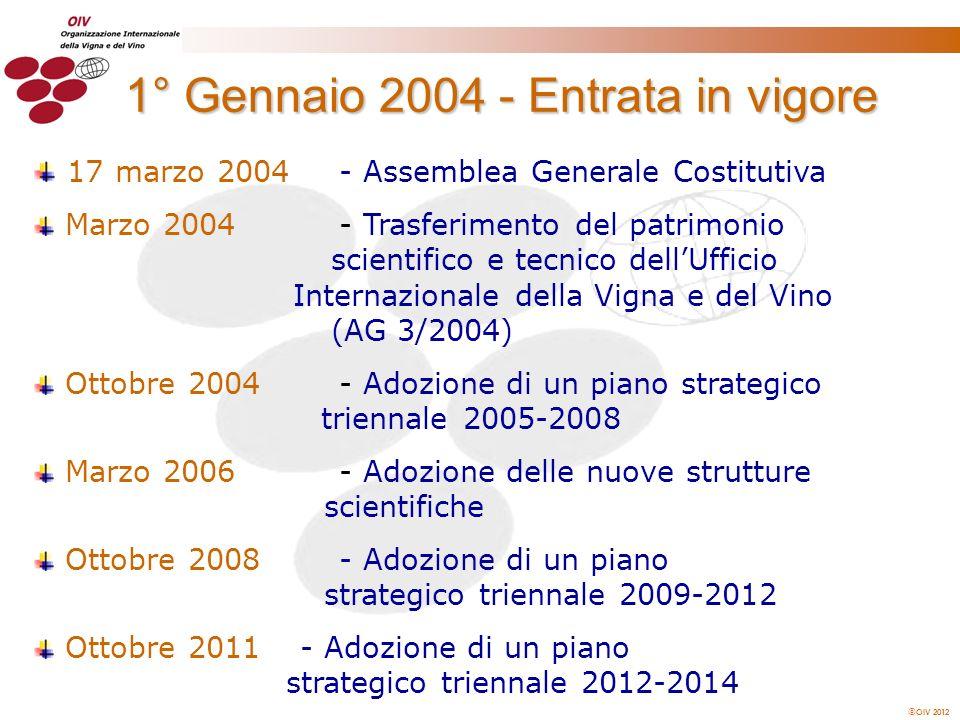 1° Gennaio 2004 - Entrata in vigore