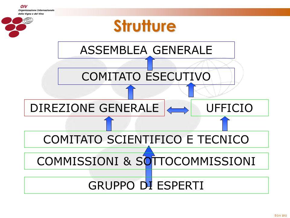 Strutture ASSEMBLEA GENERALE COMITATO ESECUTIVO DIREZIONE GENERALE