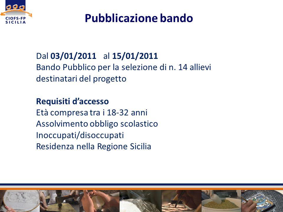 Pubblicazione bando Dal 03/01/2011 al 15/01/2011