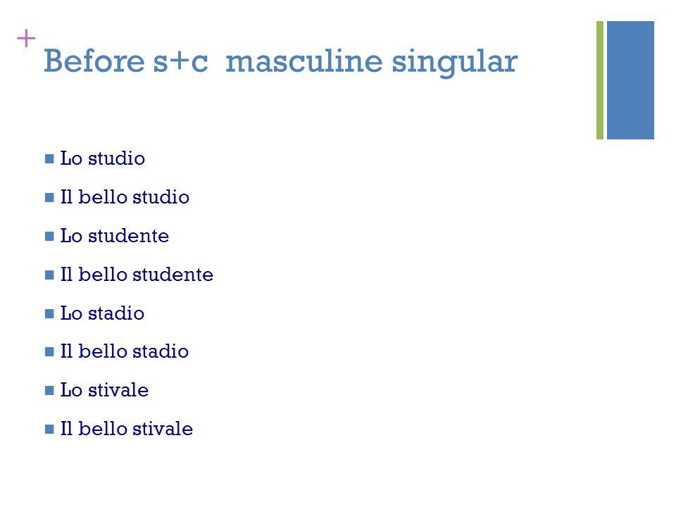 Before s+c masculine singular