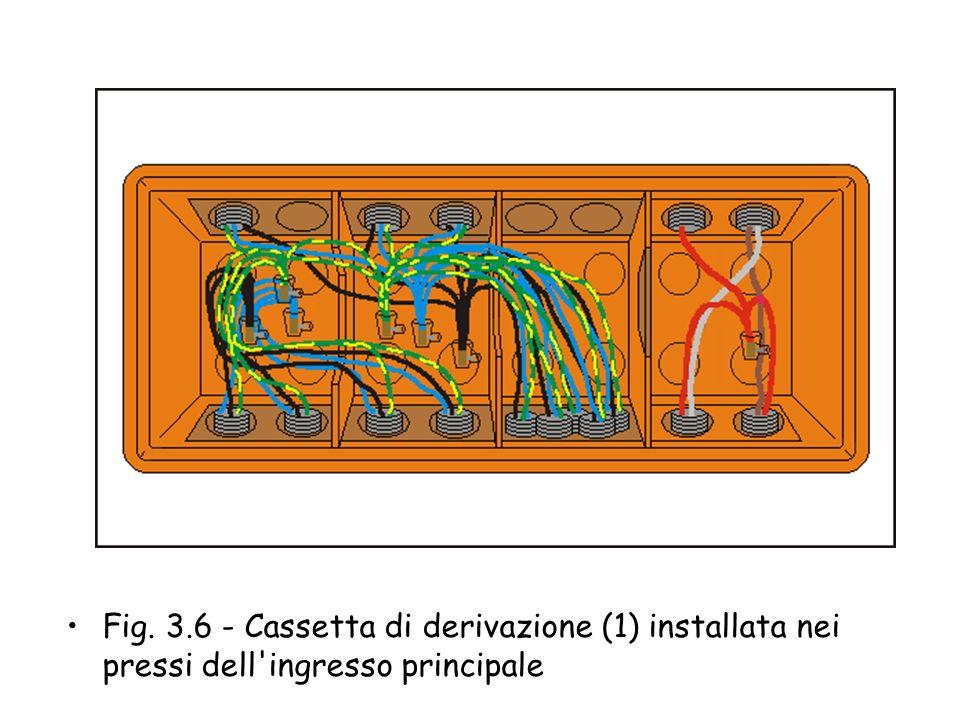 Fig. 3.6 - Cassetta di derivazione (1) installata nei pressi dell ingresso principale