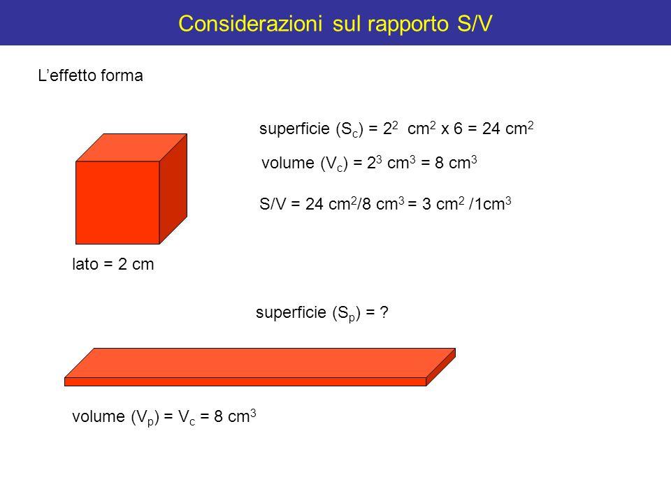 Considerazioni sul rapporto S/V