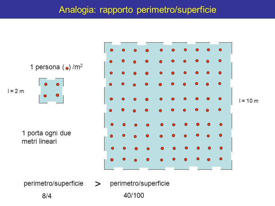 Analogia: rapporto perimetro/superficie