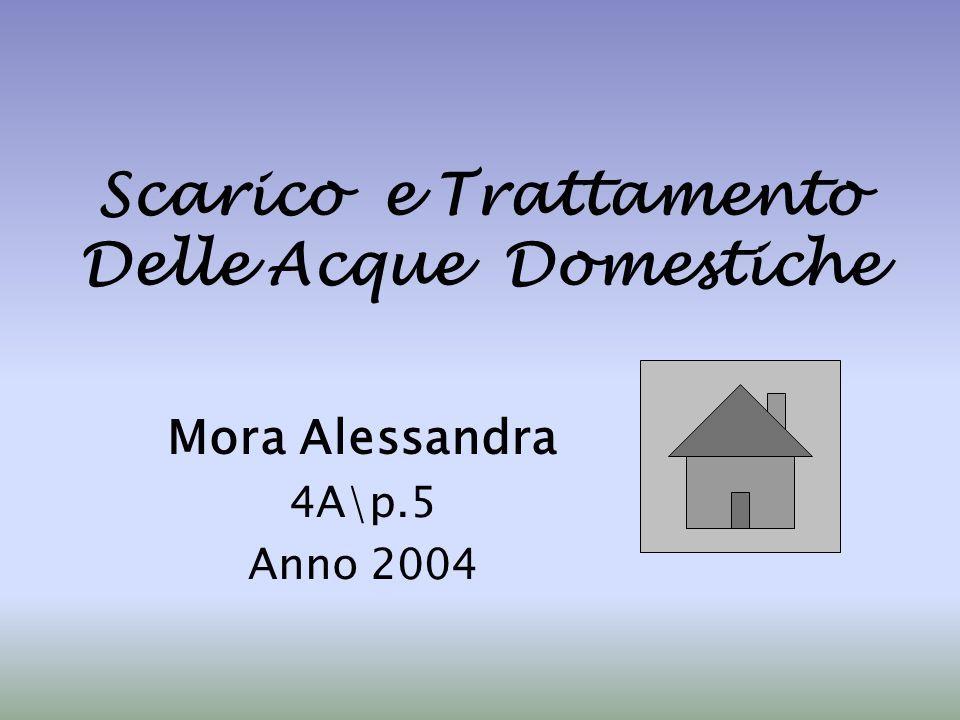 Scarico e Trattamento Delle Acque Domestiche
