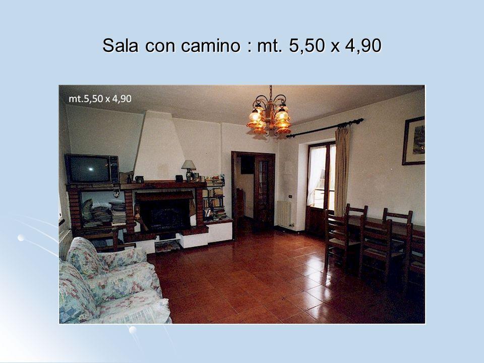 Sala con camino : mt. 5,50 x 4,90