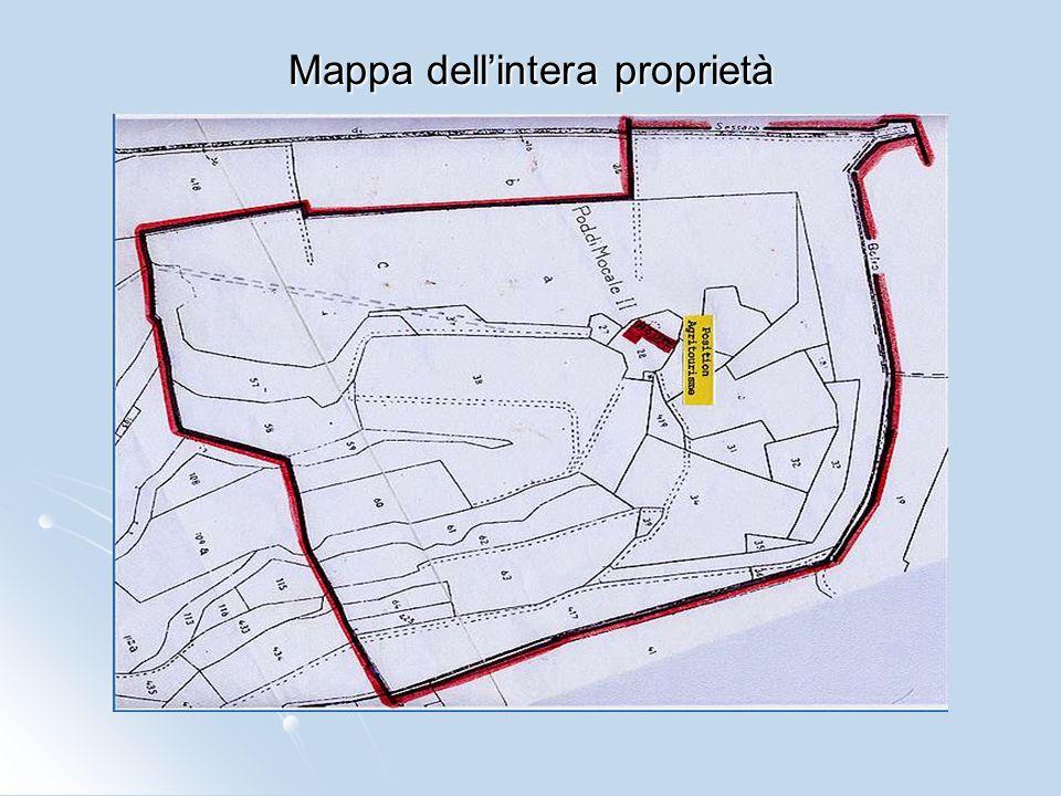 Mappa dell'intera proprietà
