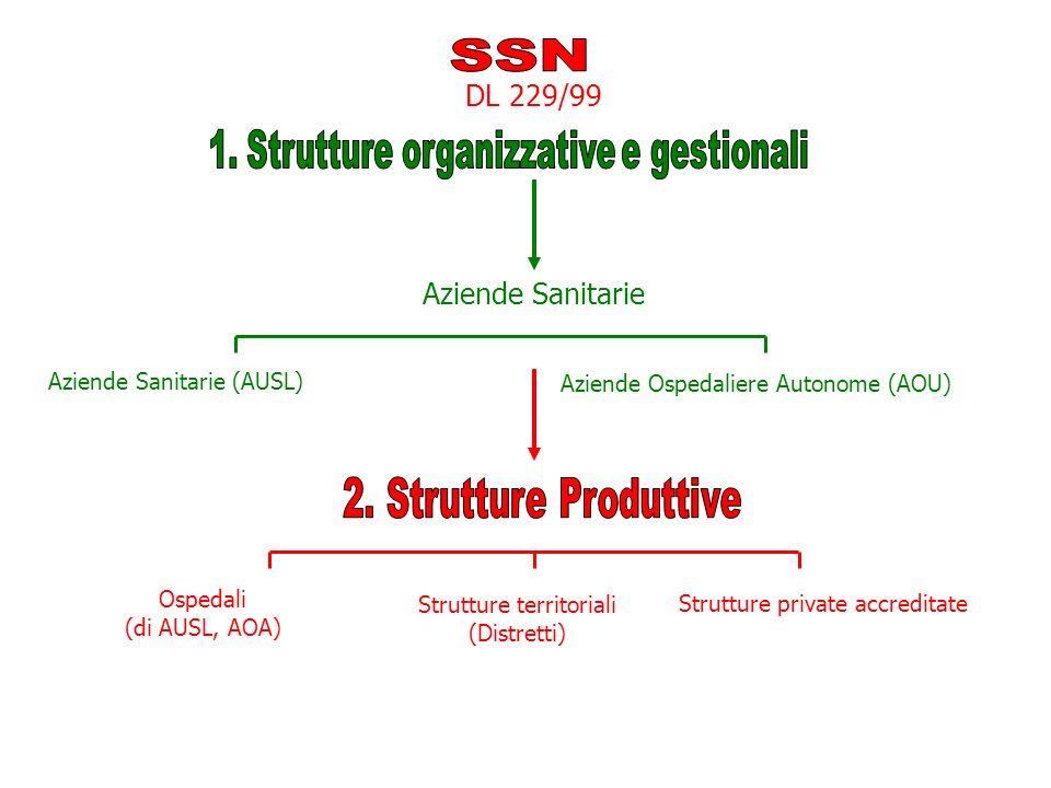 SSN 2. Strutture Produttive DL 229/99