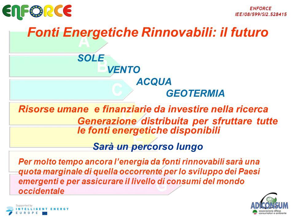 Fonti Energetiche Rinnovabili: il futuro