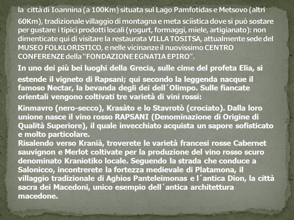 la città di Ioannina (a 100Km) situata sul Lago Pamfotidas e Metsovo (altri 60Km), tradizionale villaggio di montagna e meta sciistica dove si può sostare per gustare i tipici prodotti locali (yogurt, formaggi, miele, artigianato): non dimenticate qui di visitare la restaurata VILLA TOSITSA, attualmente sede del MUSEO FOLKLORISTICO, e nelle vicinanze il nuovissimo CENTRO CONFERENZE della FONDAZIONE EGNATIA EPIRO .